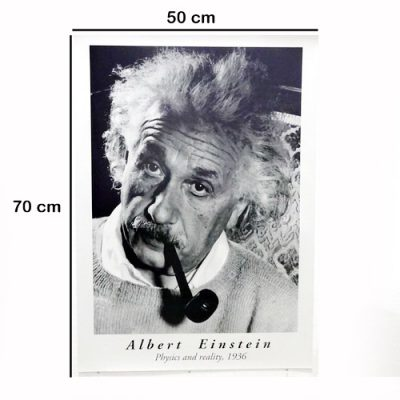 Poster Albert Einstein Physics And Reality